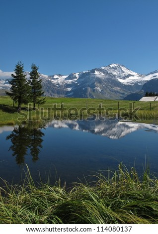 Wildstrubel And Mirroring In A Little Lake - stock photo