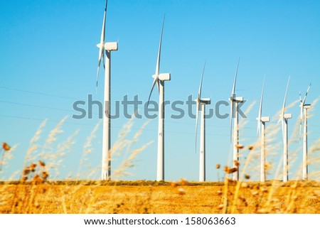 Wind farm at farmland in summer - stock photo
