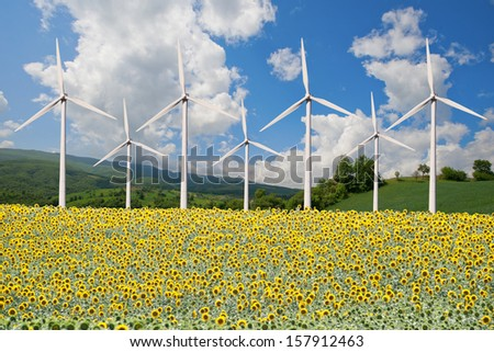 Wind power plant and sunflower field - stock photo