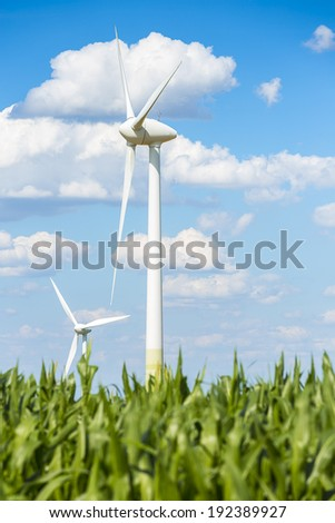 wind turbines Alternative Energy with maize field agriculture landscape and blue cloudy sky - stock photo