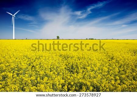 Wind Turbines in a Rape Field - stock photo