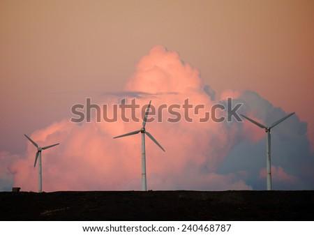 Wind turbines in sunset light - stock photo