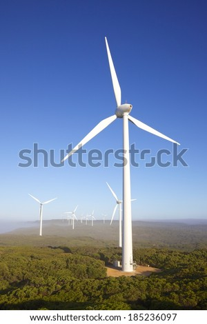 Wind turbines on a misty morning at Albany Wind Farm, near the town of the same name in Western Australia. - stock photo