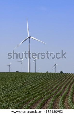 Wind Turbines on Windmill Farm Among Corn Crops - stock photo