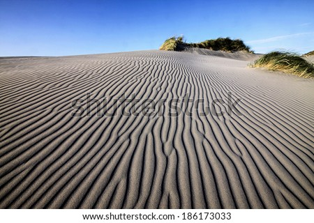 wind undulating desert in South Australia - stock photo