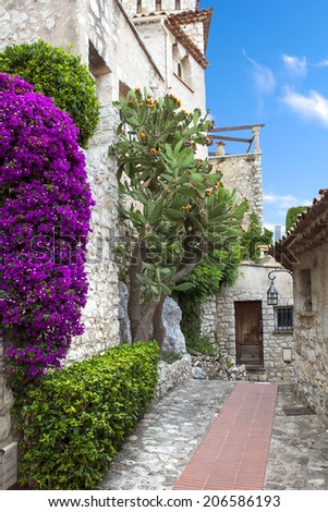 Winding narrow stone streets in Eze near Nice, France.  Beautiful bougainvillea. - stock photo