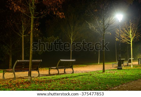 Winding pathway through colorful autumn woodland with two wooden rustic benches illuminated at night by wrought iron street lamps in a tranquil scene - stock photo