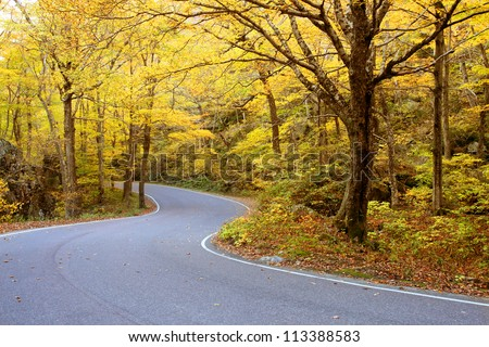 Winding road through fall foliage in Mt. Mansfield in Stowe mountain ski resort, Vermont, US - stock photo