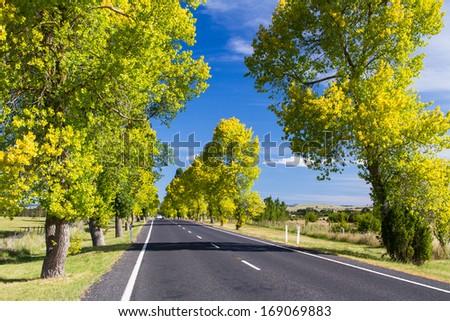 Winding road through farmlands in Queensland, Australia. - stock photo