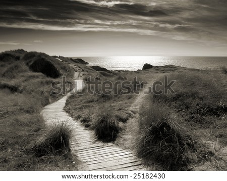 Winding wooden path running through coastal grass, leads the way to the light. - stock photo