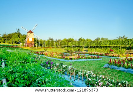 Windmill with flower garden landscape - stock photo
