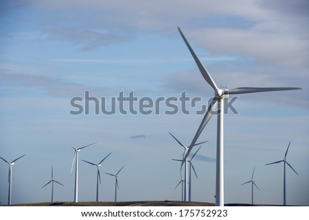 windmills for renewable electric energy production - stock photo