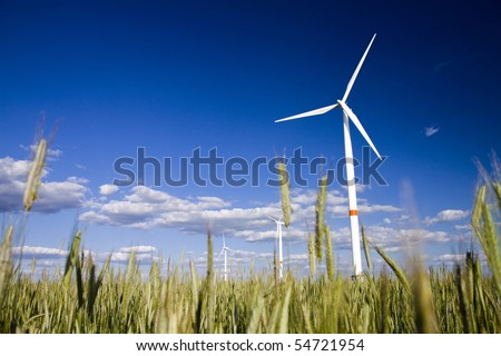 Windmills in a field of rye with blue sunny sky - stock photo