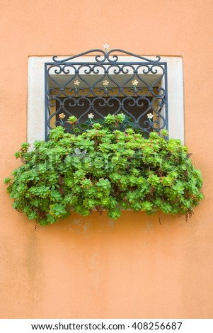 Window decorated with grid and plants. - stock photo