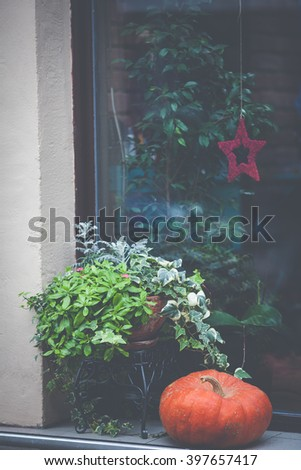 Window sill decorated with pumpkins and a flowerpot - stock photo