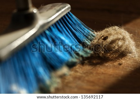 Window sunlight gives a romantic atmosphere to a blue broom surrounded by dust and a canine originated fur ball. Shallow depth of field. - stock photo