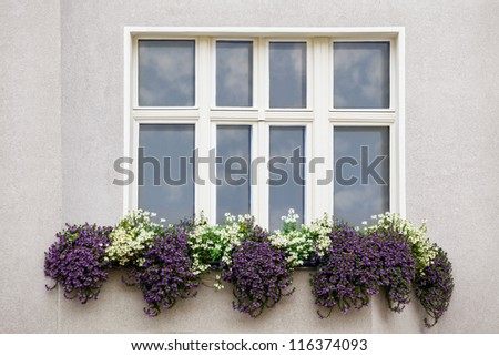 Window with a Sky Reflection and flowerpot outside in a european town - stock photo