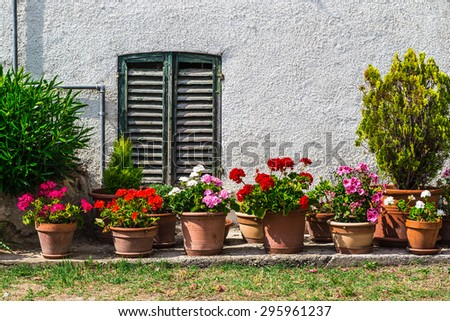 Windows and doors in an old house decorated with flower pots and flowers - stock photo