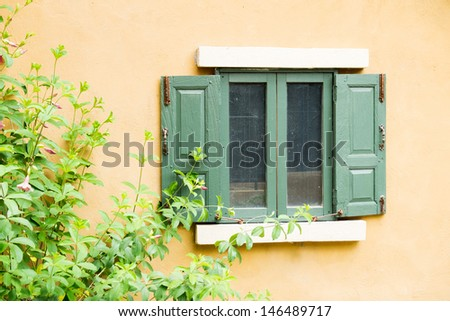 Windows with trees - stock photo