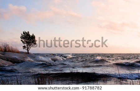 Windy evening at the archipelago in sweden. - stock photo