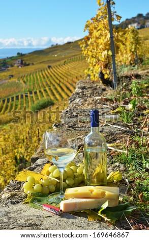 Wine and cheese. Lavaux region, Switzerland  - stock photo