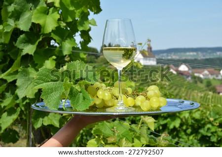 Wine and grapes against vineyards in Rheinau, Switzerland - stock photo