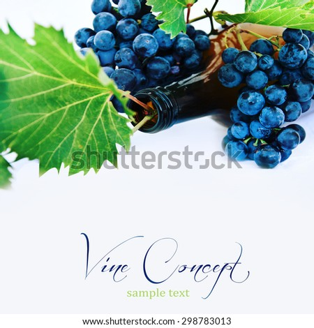 Wine bottle and grapes - stock photo