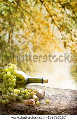 Wine bottle , grape and corks on wooden table on vineyard background/ summer wine background - stock photo