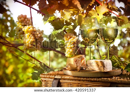 Wine, grapes and cheese against vineyards - stock photo