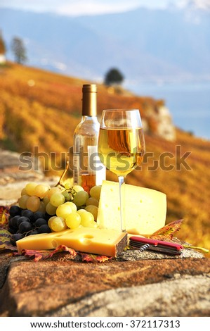 Wine, grapes and chesse on the terrace vineyard in Lavaux region, Switzerland - stock photo