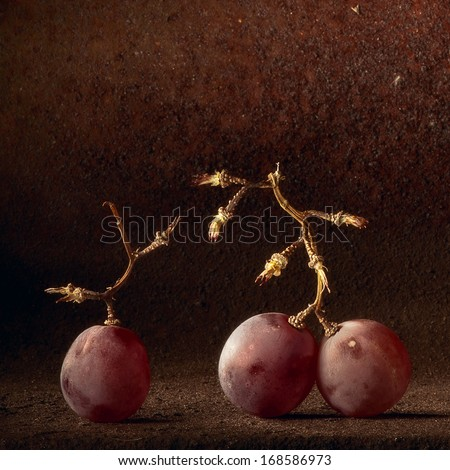 Wine grapes light painting. Abstract fruit still life concept for wine tasting or harvest vineyard - stock photo