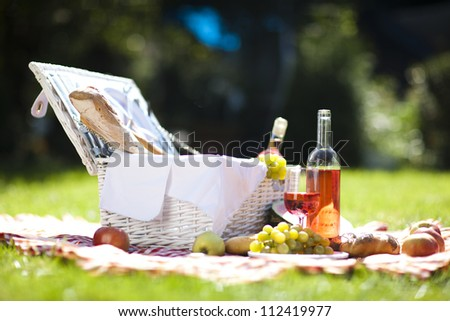 Wine on picnic! - stock photo