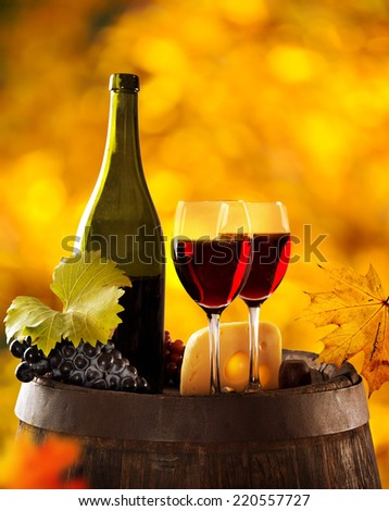 Wine still-life, glass, young vine and bunch of grapes - stock photo