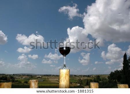 Wine Valley - stock photo