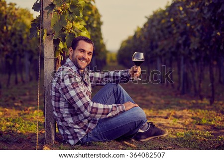 Winemaker siting in vineyard with a glass of red wine, toned - stock photo