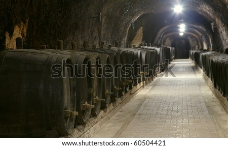 Winery underground with old wine woods - stock photo