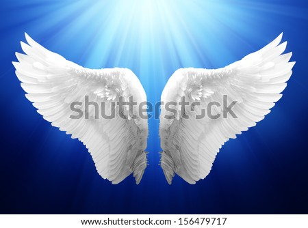 Wing in Blue Background - stock photo