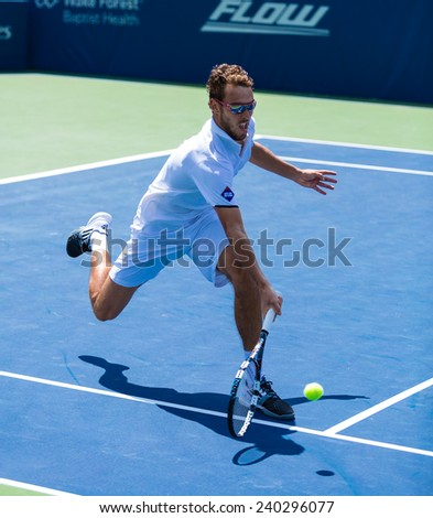 WINSTON-SALEM, NC, USA - AUGUST 20: Jerzy Janowicz plays on center court at the Winston-Salem Open on August 20, 2014 in Winston-Salem, NC, USA - stock photo
