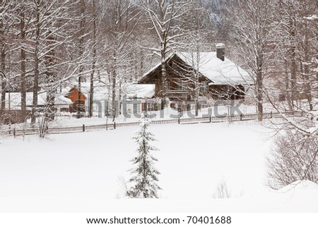 winter Alpine landscape with house and trees. horizontal shot - stock photo