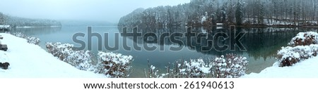 Winter Alpsee lake panorama with trees reflection. Cloudy view.  - stock photo