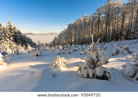 Winter background above the clouds - stock photo