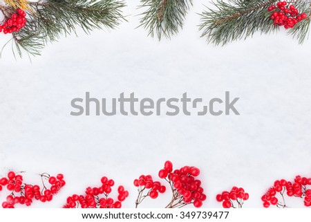 winter  background berries and  fir branch frame on snow rustic style - stock photo