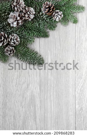 Winter background border of fir and snow covered pine cones over light weathered wood. - stock photo