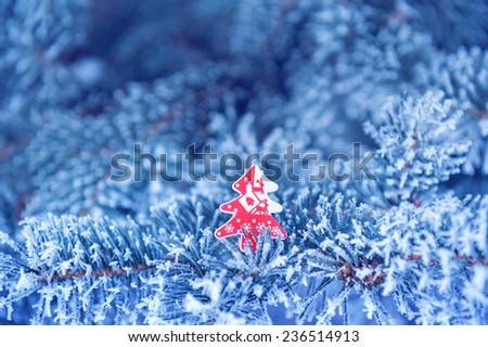 Winter background, close up of frosted pine branch on a snowing day with copy space. - stock photo