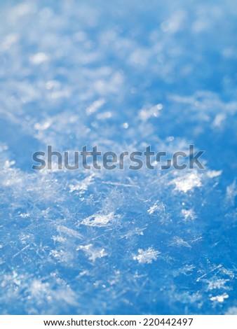 Winter background. Snowflakes on the white snow. - stock photo