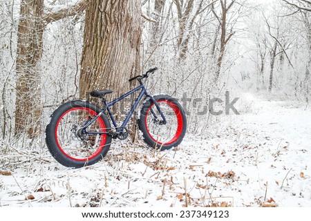 Winter biking. Fat Tire Bike. - stock photo