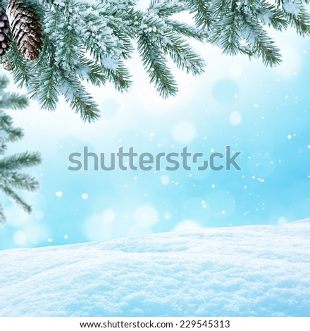 Winter Christmas background with fir tree branch  - stock photo