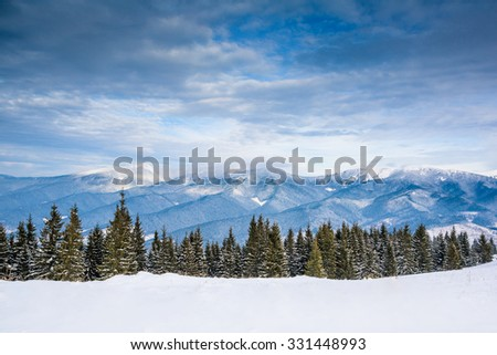 Winter/Christmas background with mountains and trees - stock photo