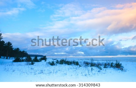 Winter coastal landscape with small trees on Baltic Sea coast under colorful evening cloudy sky. Gulf of Finland, Russia - stock photo