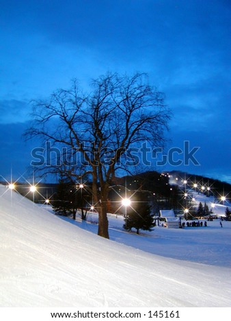 Winter Dusk - stock photo